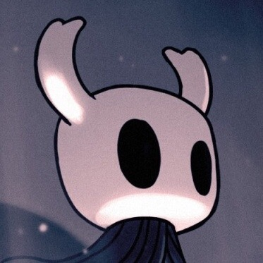 So… Hollow Knight